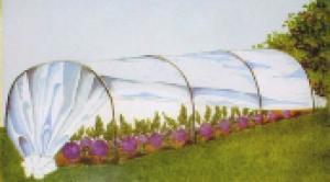 Frühbeet-Tunnel, Folientunnel (1 Set mit 1 geschlossenen, 1 gelochter Folie + 1 Vlies)
