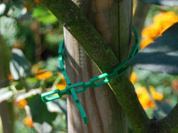 Pflanzenbinder, Pflanzenanbinder ca. 31 cm lang, 1 Stück